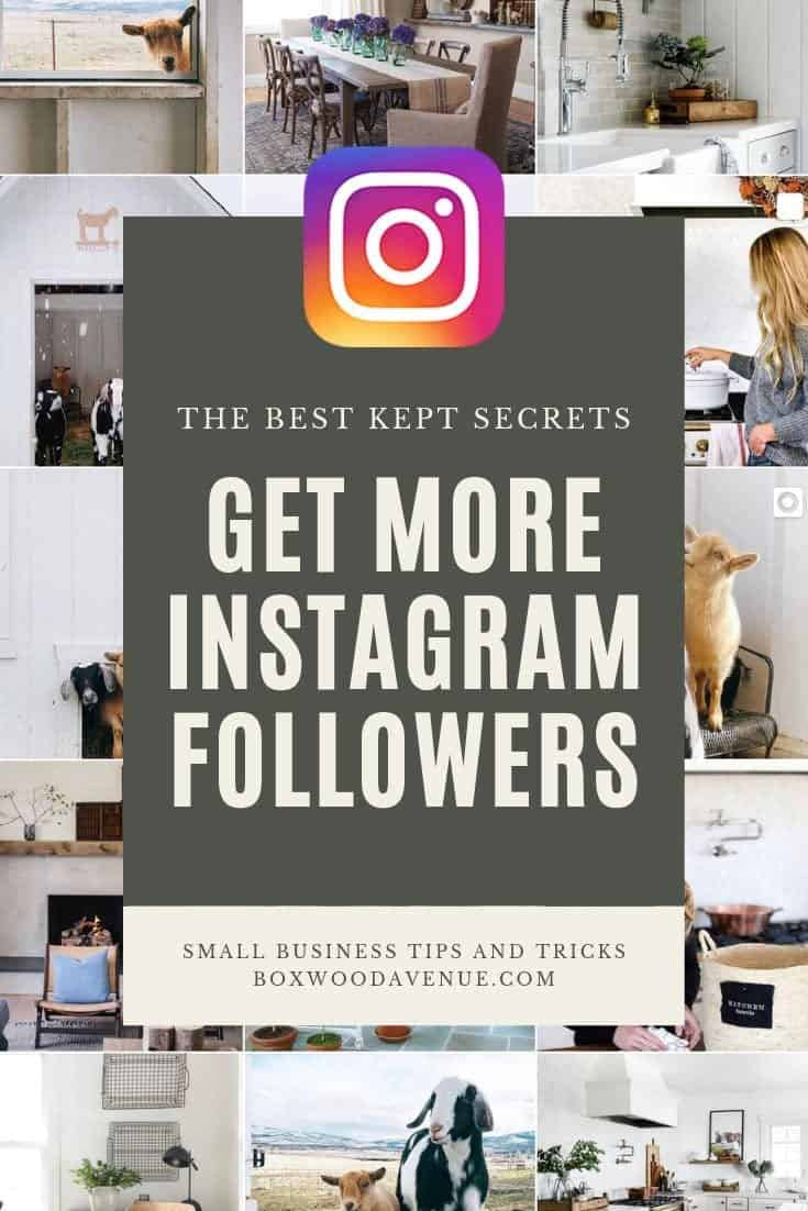 Want to learn how to get more followers on Instagram? Here are my tips and tricks for growing your account to help your business flourish on Instagram!