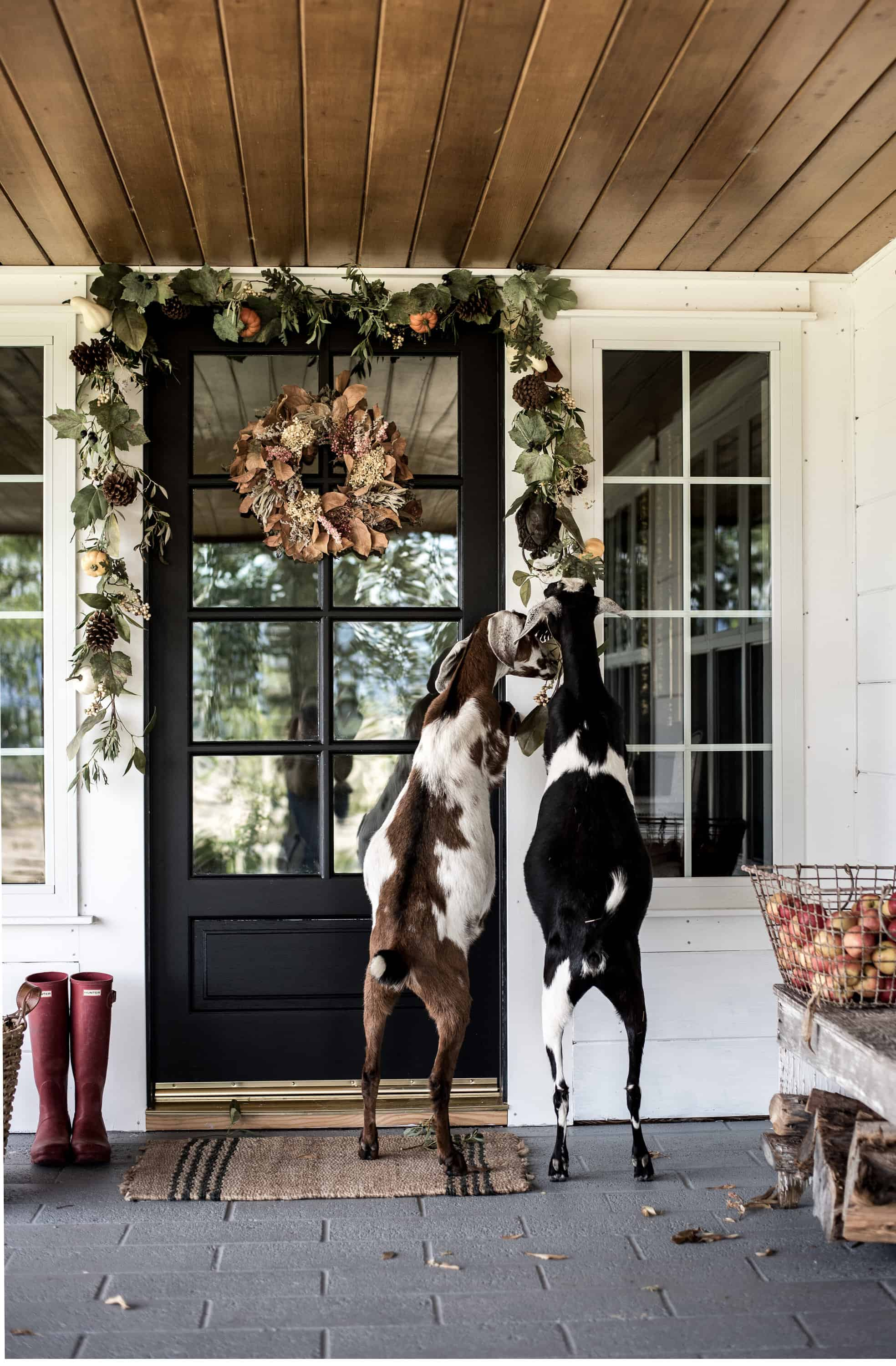Fall is officially here, so it's safe to break out that fall porch decor! Get inspired to decorate for fall with these simple decorating ideas!