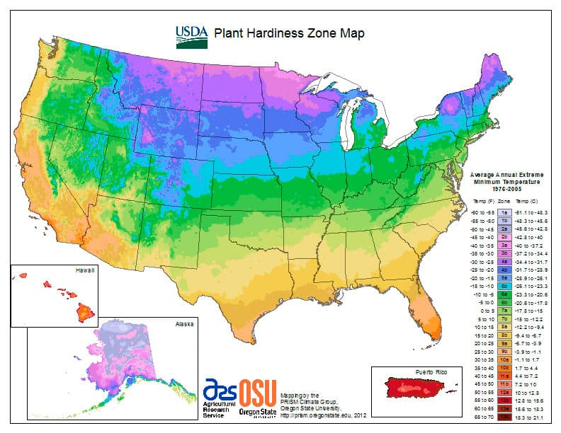 Map of USA showing gardening zone locations from USDA.