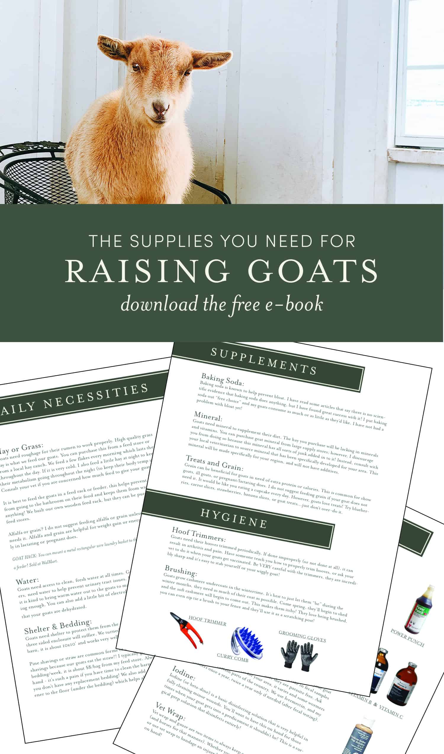 Raising goats is so much easier when you have the right supplies! These are some of the supplies I use to help keep my goats healthy and happy!