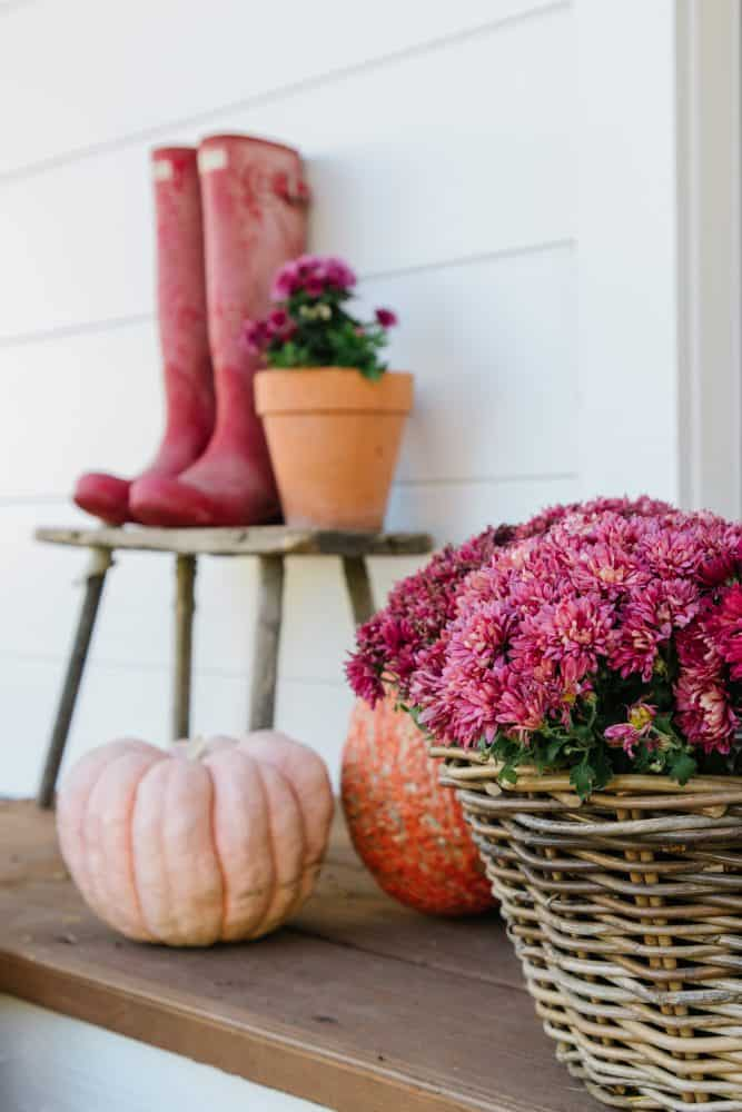 Basket of pink mums and pumpkins on farmhouse porch