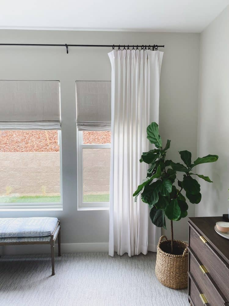 White curtains in bedroom with grey walls and fiddle leaf fig tree.
